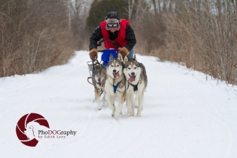 Cannington Dog Sled Races, Ontario, snow dogs, siberian husky, dogs, races, Toronto Pet Photographer, pet photography